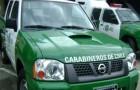 Carabineros de Castro detiene a sujeto que intentó robar vehículo en sector Gamboa