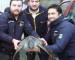 Trasladan a Antofagasta tortuga verde encontrada en Dalcahue