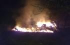 Incendio destruyó dos cabañas desmanteladas en el sector de Nercón